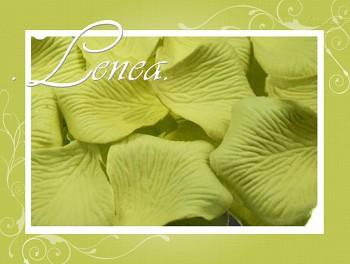 Okvětní plátky-zelenkavé