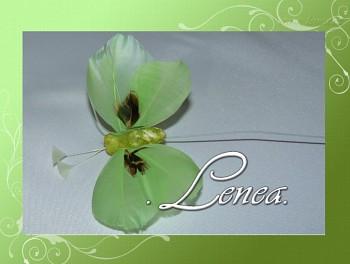 Motýl z peří-zelený