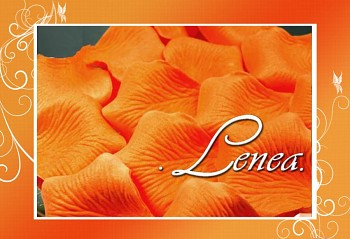 Okvětní plátky -jasně oranžové ST