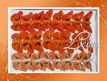 Motýl - sada oranžová -24ks