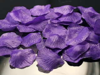 Okvětní plátky- tmavě fialové